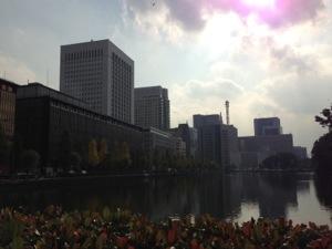 20121113-210023.jpg